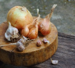 Borges - Mediterranean cuisine - Tip: onion before garlic